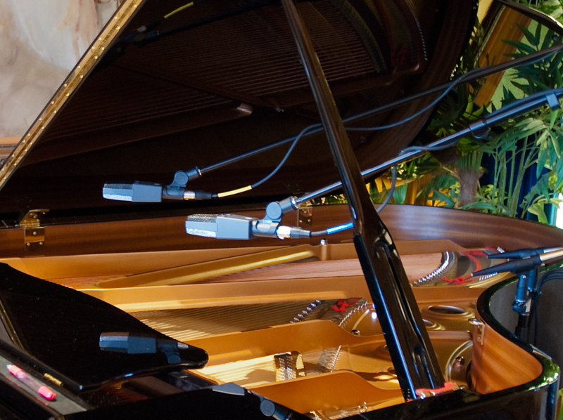 "Sunny Hills Studios Yamaha 6'7"" C5 Conservatory Grand"